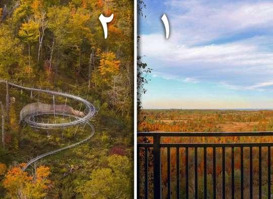 خانواده-طبیعت-امروز-برای-دیدن-پائیز-اطراف-تورنتو-کجا-بروم-این-دو-جا-را-از-دست-ندهید