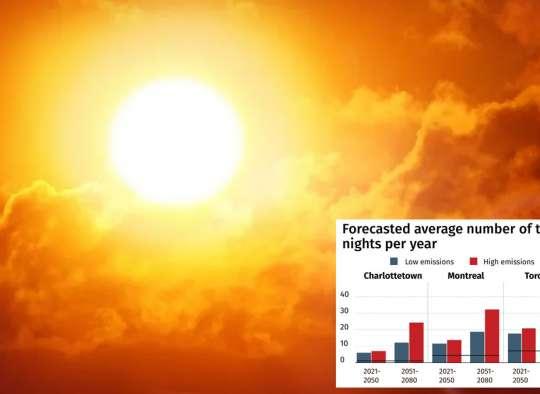 نظریه جدید دانشمندان: روند مرگ انسان و طبیعت در اثر موج گرما چگونه است؟